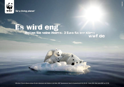 d-Kampagnen-WWF-Eisbaer.png